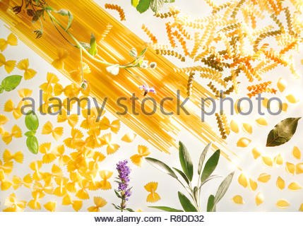 Pasta with Herbs on white background - Stock Photo