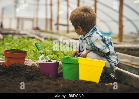 planet protection. planet protection by growing flowers. small boy fight for planet protection. planet protection of small kid in greenhouse. small gardener. - Stock Photo