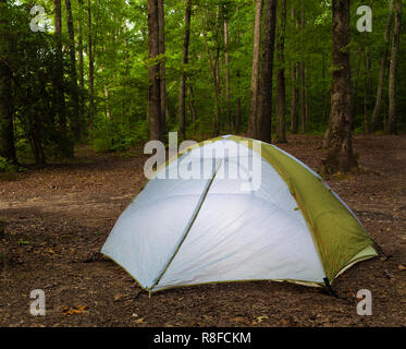 Small tent set up in a dark North Carolina forest - Stock Photo
