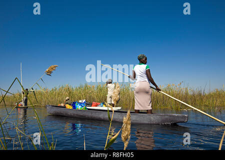 Local woman working on Mokoro to deliver tourists and campers across the rivers of the Delta. - Stock Photo