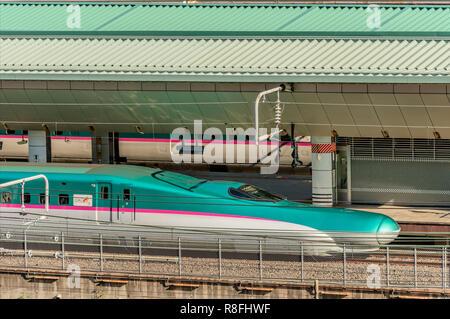 Hayabusa Shinkansen train at Tokyo Station, Japan | Hayabusa Shinkansen im Bahnhof von Tokyo, Japan - Stock Photo