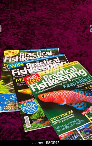Practical Fishkeeping Hobbyists Monthly Magazine or Periodical, UK - Stock Photo