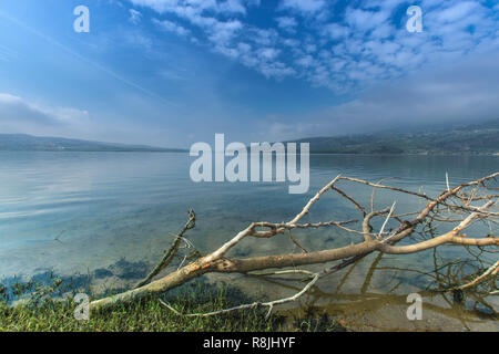 beautiful view over the lake in foggy morning,algeria