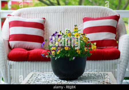 White Patio Furniture and Colorful Pansies in a Black Metal Bucket - Stock Photo