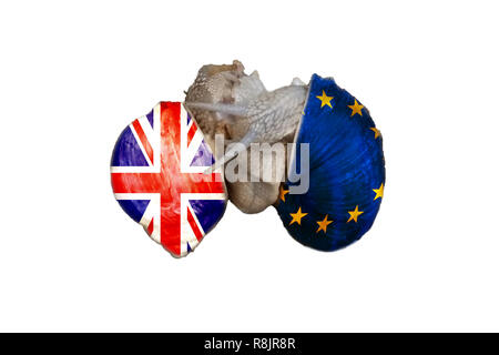 Two vineyard snails playing lovemaking. On the snail shells once the flag of England and on the other the EU flag. Concept Brexit - Stock Photo