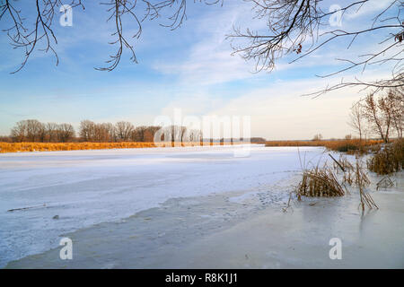 Frozen river, forest in the distance, dry sedge and blue cloudy sky - Stock Photo