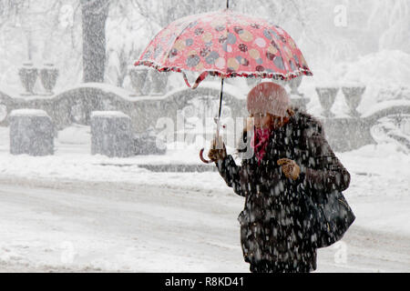 Belgrade, Serbia - December 15, 2018: One young woman walking under umbrella in heavy snowfall in city street by the park - Stock Photo