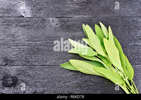 Bunch of leaves of fresh green sage on a black wooden background - Stock Photo