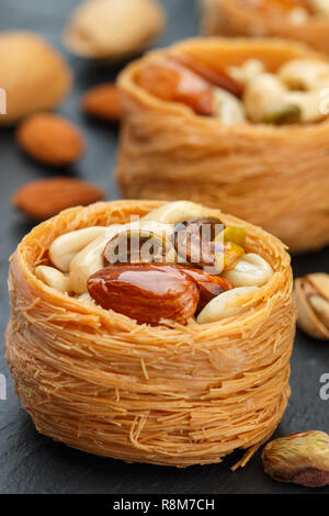 Traditional middle Eastern sweets 'bird's nest' in honey syrup with nut filling - almonds, cashews, pistachios. Baklava close-up. Delicious dessert