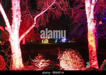 Christmas Glow 2018, Seven Acres and Pagoda. RHS Garden Wisley, Woking, Surrey, England, UK, Europe. - Stock Photo