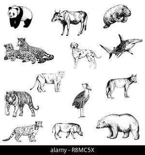 Big set of hand drawn sketch style animals isolated on white background. Vector illustration. - Stock Photo