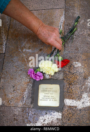 Palma, Spain. 16th Dec, 2018. A woman puts flowers on the stumbling block that the German artist Gunter Demnig had previously placed in memory of Josep Roy Rivas, who was deported to Mauthausen Gusen in 1941 and killed on 27 November 1941. The monument commemorates those persecuted, deported and murdered by the National Socialists. From 16 to 18 December, 34 stumbling blocks will be placed on Mallorca in recognition of people who have fallen victim to National Socialism. Credit: Clara Margais/dpa/Alamy Live News - Stock Photo