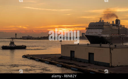 Niew Amsterdam Holland America Cruise Ship approaching Port Everglades Fort Lauderdale Florida assisted by tugboat from Seabulk Towing - Stock Photo