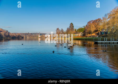 the Doyards lake with a wonderful reflection with ducks swimming in the water and the village of Vielsalm in the background in the Belgian Ardennes - Stock Photo