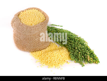 Millet in a bag with green spikelets isolated on white background - Stock Photo