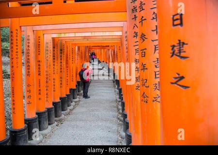 The famous Fushimi Inari Shrine in Kyoto,Japan - Stock Photo