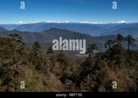 The Himalayas from Top of Dorchula Pass, Bhutan - Stock Photo