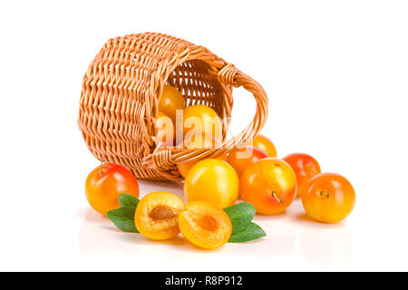 yellow plums in a wicker basket with leaf isolated on white background - Stock Photo