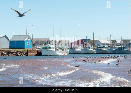Canada, Province of Prince Edward Island, harbour, fishing boats - Stock Photo