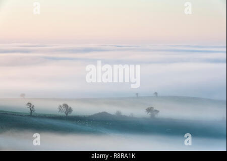On the border between England and Wales near Knighton, Powys, UK. Early morning view over Herefordshire showing the valleys filled with thick fog - Stock Photo
