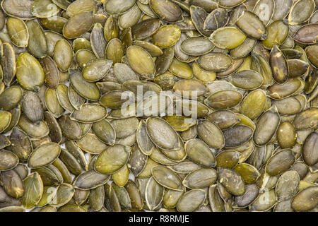 Closeup of lot of whole hulled pumpkin seeds flatlay isolated - Stock Photo