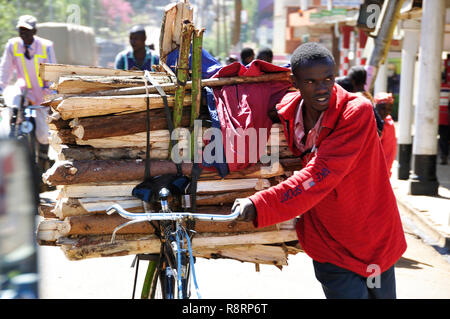 Rift Valley: A young man carring wood on his bycicle trough the streets of Eldoret city - Stock Photo