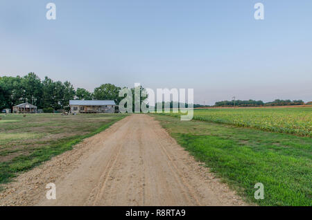 A dirt and gravel road leads to Tallahatchie Flats in Greenwood, Mississippi. - Stock Photo