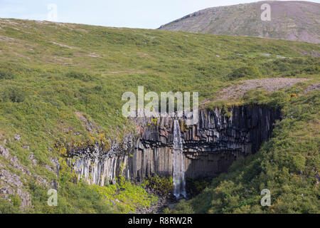 Wasserfall Svartifoss, 'schwarzer Wasserfall', Skaftafell-Nationalpark im Südosten Islands, Vatnajökull Nationalpark, Stórilækur stürzt über eine Fels - Stock Photo
