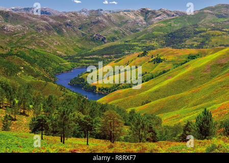 View of splendid landscape with green hills surrounding blue lake with high mountain pics in the background - Stock Photo