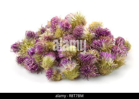 Pile of dried cotton thistle flowers isolated on white - Stock Photo