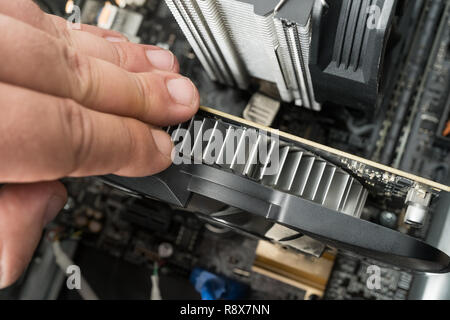 Caucasian man assembling pc computer internal parts. Closeup on graphics card and cpu processor heat sink. - Stock Photo