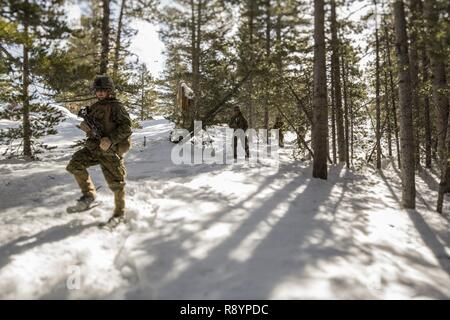 U.S. Marines with Bravo Company, 1st Combat Engineer Battalion (CEB), 1st Marine Division patrol during Mountain Training Exercise (MTX) 2-17 at the Marine Corps Mountain Warfare Training Center, Bridgeport, Calif., Mar. 17, 2017. 1st CEB completed the final exercise of MTX 2-17, a three-part cycle consisting of avalanche initiation, ice breaching, obstacle emplacement and tree cutting using explosives. - Stock Photo