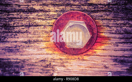 Rusty screw in a wooden plank - Stock Photo
