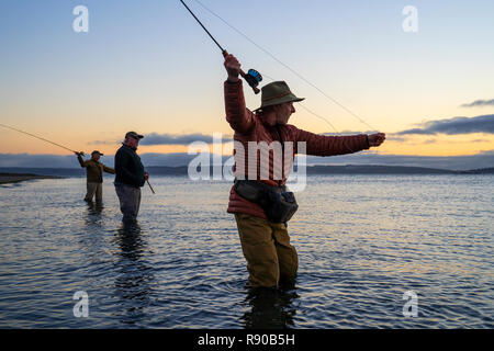 Two fly fishermen cast for searun coastal cutthroat trout and salmon with their guide standing between them on a salt water beach on a beach on the we - Stock Photo