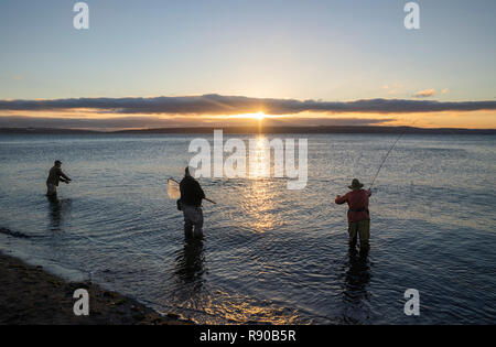 Two fly fishermen cast for searun coastal cutthroat trout and salmon at sunrise with their guide standing between them at the salt water beach at a be - Stock Photo