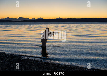 A silhouette of a fly fisherman casting at sunrise for searun coastal cutthroat trout on a beach on the west coast of the USA - Stock Photo