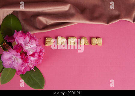 zoom of the word dream written in dry biscuit letters in front of a curtain of old pink velvet. Rhododendron's flower. Minimum color still life - Stock Photo