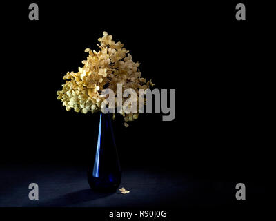 Dried hydrangea flowers in blue vase. Still life, light painting. Melancholic, time passing concept. - Stock Photo