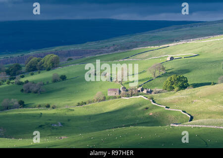 Countryside near Kirkby Stephen in the Upper Eden Valley, Cumbria, UK. - Stock Photo