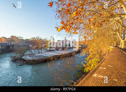 Rome (Italy) - The Tiber river and the monumental Lungotevere. Here in particular the Isola Tiberina island. - Stock Photo