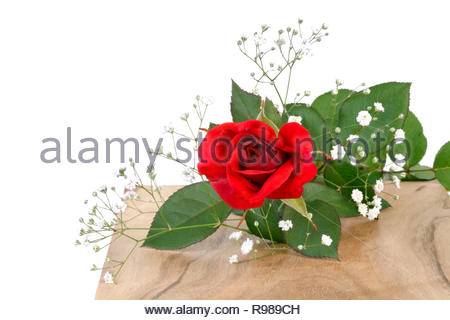 Decorative flower on fresh cut tree trunk. Decorative background for festive occasion - Stock Photo