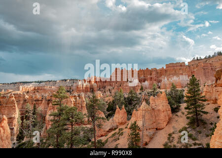 Spire shaped rock formations known as hoodoos at Bryce Canyon National Park in Utah, USA - Stock Photo