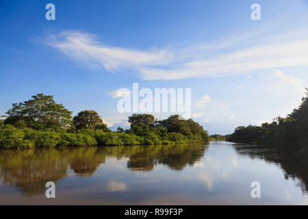 View of Frío River at Caño Negro Wildlife Refuge. Alajuela province. Costa Rica. - Stock Photo
