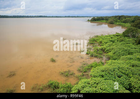 View of Caño Negro Lake. Caño Negro Wildlife Refuge. Alajuela province. Costa Rica. - Stock Photo