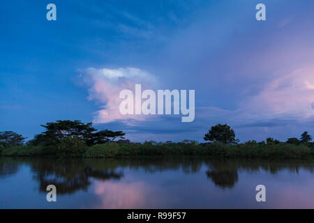 View of Caño Negro Wildlife Refuge with stormy clouds at dusk. Alajuela province. Costa Rica. - Stock Photo