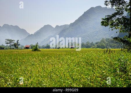 Loas countryside in Khammoune province near Thakhek - Stock Photo