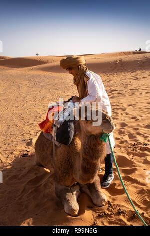 Morocco, Errachidia Province, Erg Chebbi, man preparing camel for desert ride in sand dunes - Stock Photo