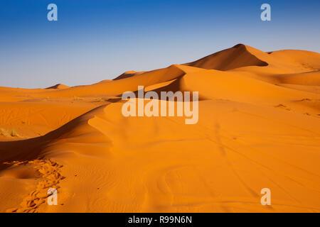 Morocco, Errachidia Province, Erg Chebbi, sand dunes at sunset - Stock Photo