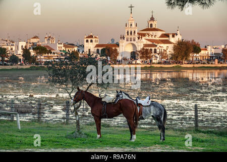 Brown and white horse behind El Rocio village at sunset - Stock Photo