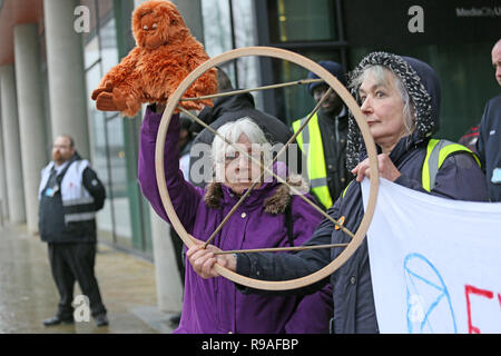 Salford, UK. 21st Dec, 2018. Extinction Rebellion campaigners one holding a toy Orangutan highlighting the threat climate change has for those in the wild. BBC, Media City, Salford, UK, 21st December 2018 (C)Barbara Cook/Alamy Live News Credit: Barbara Cook/Alamy Live News - Stock Photo